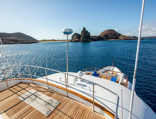 Top Luxury Galapagos Cruise Extensions to Ecuador