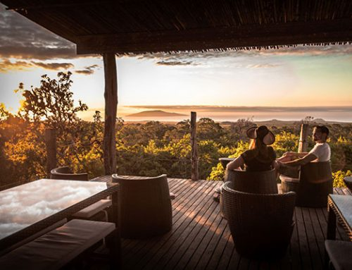 Top 5 High-End Resorts & Lodges in Galapagos