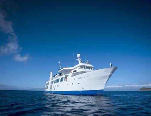 Best Luxury Galapagos Cruises Yachts, Catamarans & Ships for 2018-2019