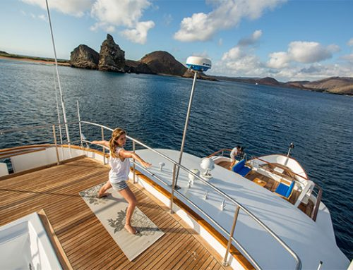 How Much Does a Luxury Galapagos Cruise Cost?